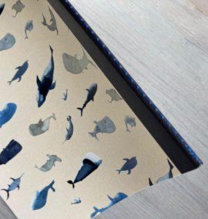 Cala cuaderno ballenas con trompa y cartón caladesde1990